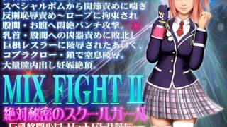 同人ゲームレビュー【動画/巨乳】[@OZ(アットオズ)]「MIX FIGHT2 絶対秘密のスクールガール」