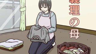 同人CGレビュー【巨乳/義母】[Iris art]「義理の母」