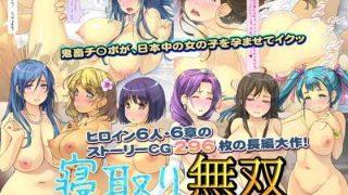 同人CGレビュー【巨乳/妊婦】[いいなり美人]「寝取り無双「俺の精子は100%孕ませる!」」