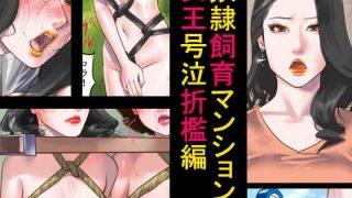 同人CGレビュー【人妻/SM】[納屋]「奴隷飼育マンション2・女王号泣折檻編」